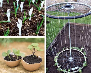 jardin trucs et astuces de grand m re naturels pour faire votre jardinage. Black Bedroom Furniture Sets. Home Design Ideas