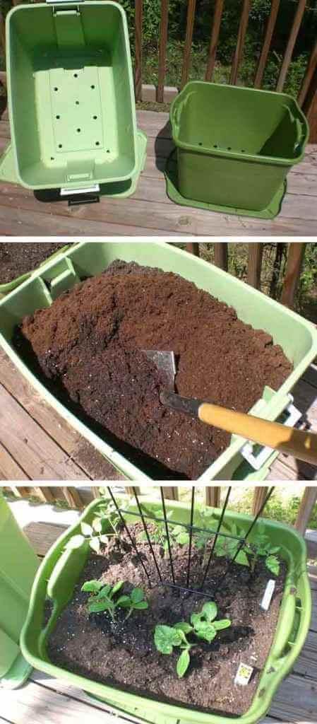 Recycler boites de rangement comme pot de fleur