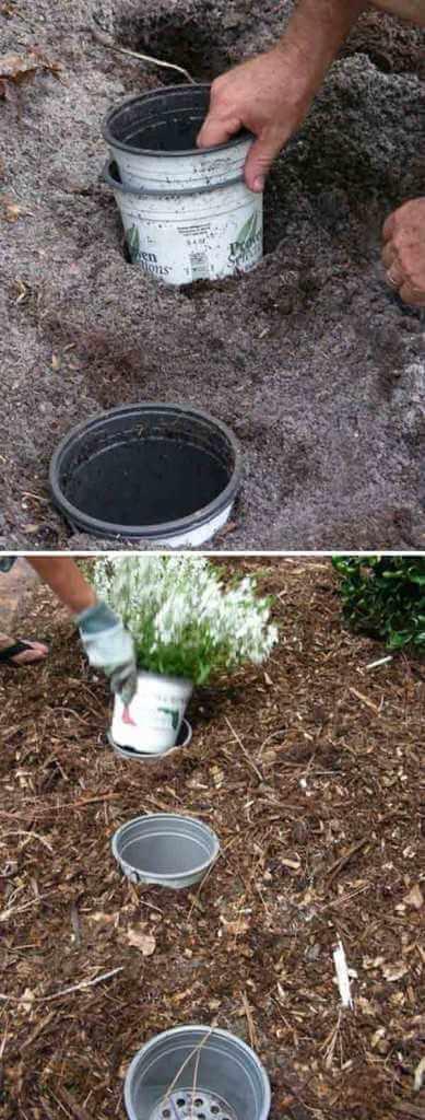 changer facilement des fleurs de place