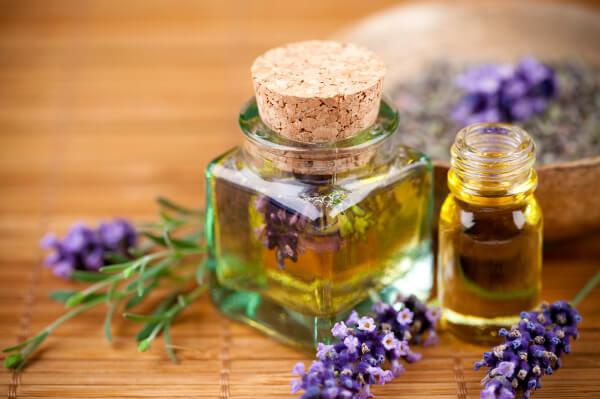 Les huiles essentielles de lavande et de menthe poivrée contre les fourmis