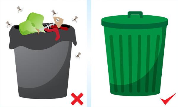 moucherons poubelle