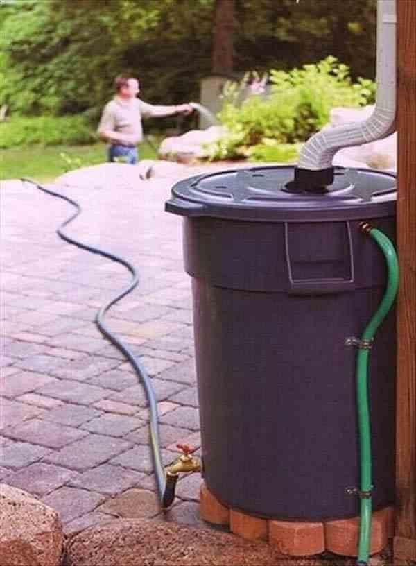récupérer eau de pluie pour arroser son jardin