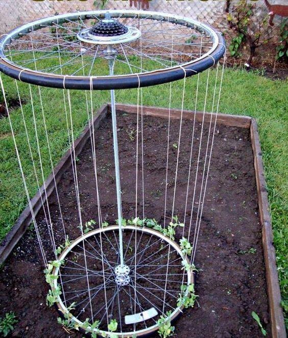 roue vélo jardin pour faire des tuteurs