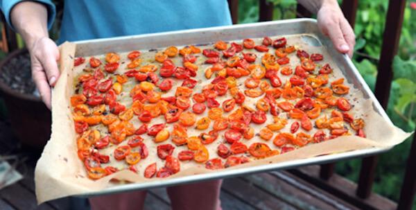 tomates congelées