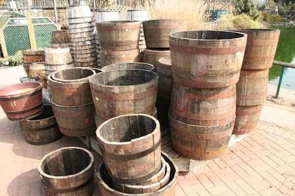 4 Etapes Simple Pour Faire Pousser Des Pommes De Terre Dans Un Tonneau
