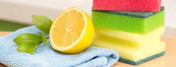 citron et éponges de couleurs