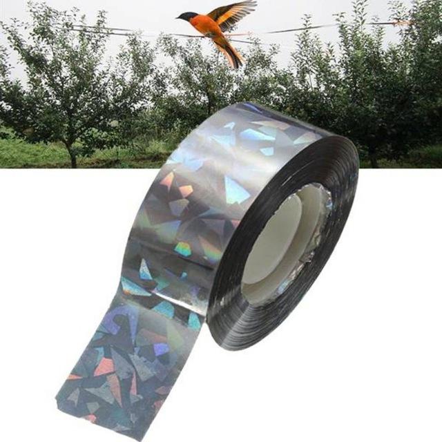Comment trouver un bon r pulsif anti pigeons - Faire fuir les pigeons ...