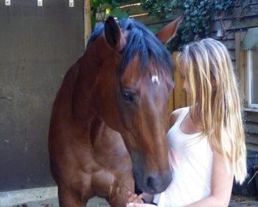 comment monter à cheval