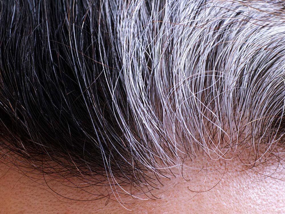 cheveux-gris-racines