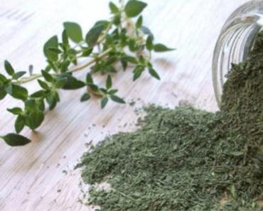 thym-herbes