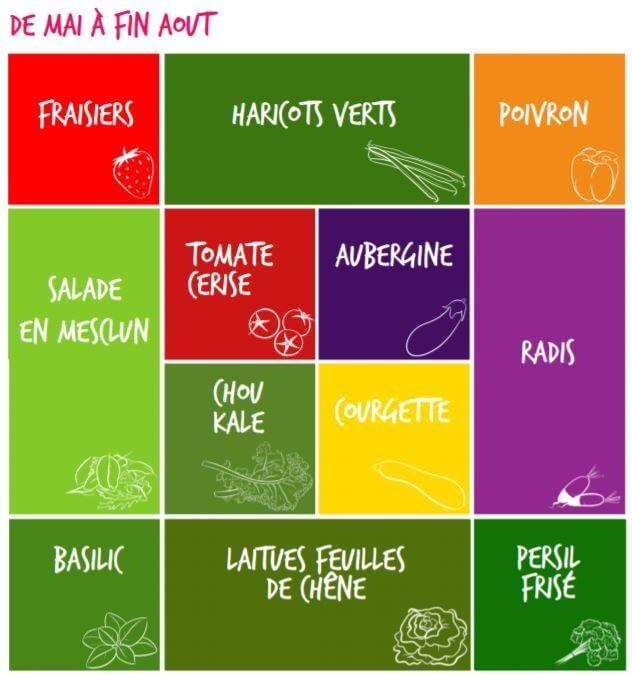 liste-plantation-fruits-et-légumes