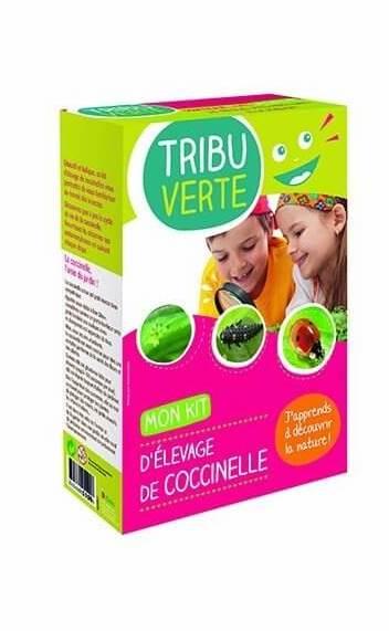 coccinelle-kit-enfant