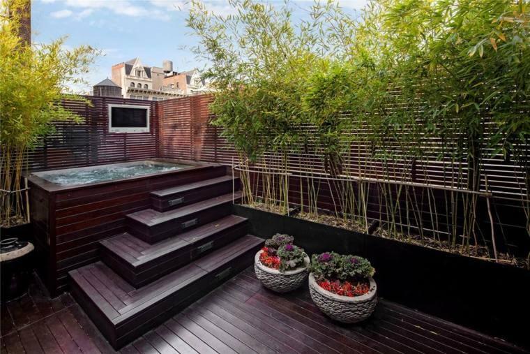 Bambou-plante