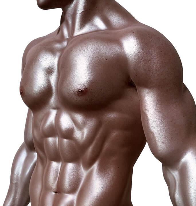 abdominaux-bodybuilder
