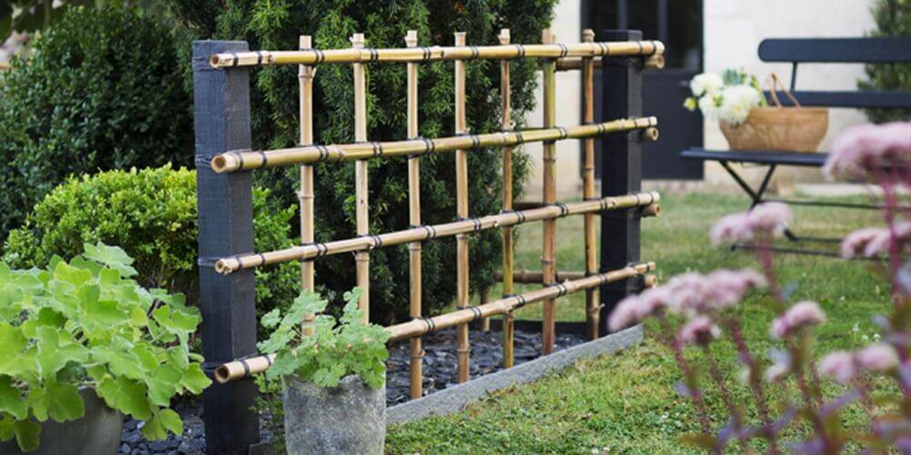 palissade-bambou